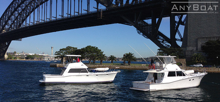Boat-Hire-Sydney-with anyboat